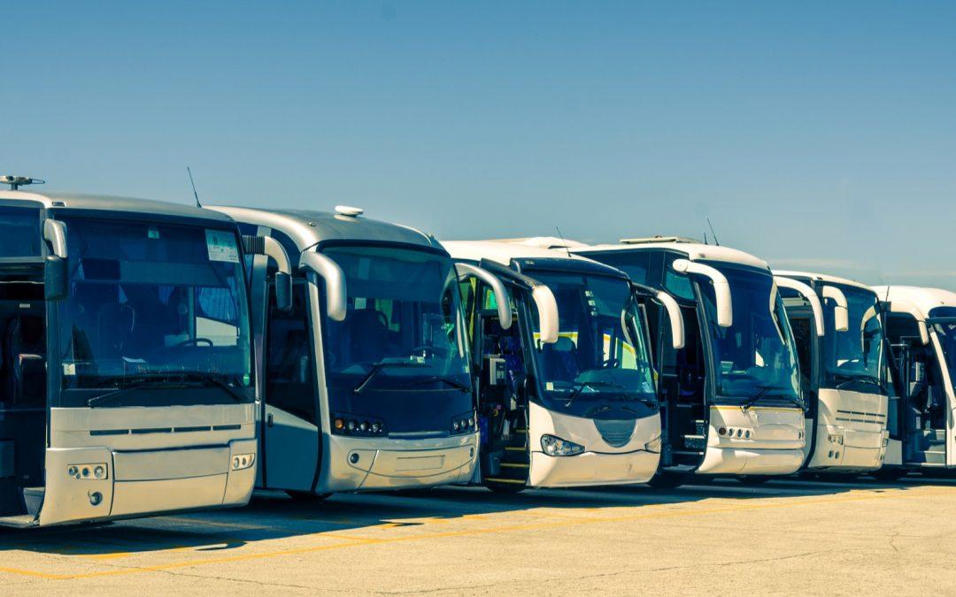 Il Tour Leader dei viaggi in bus